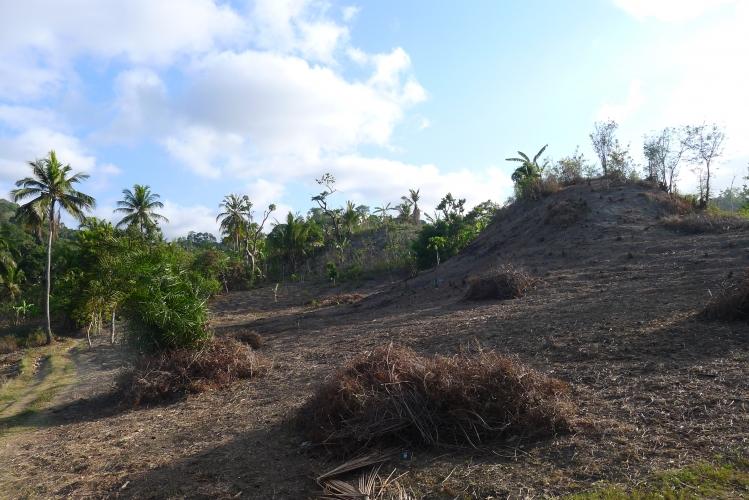 Construction du lycée des métiers du bâtiment de Longoni à Mayotte