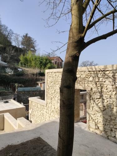 Réhabilitation du site de la Maison du Festival - Vienne (38)